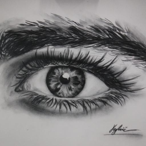 risanje po opazovanju
