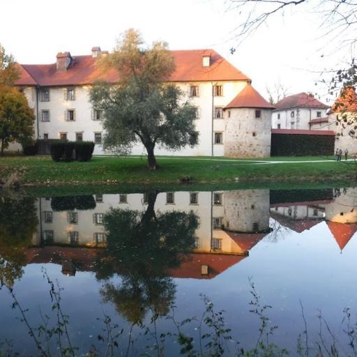 Zrcalce, zrcalce v reki Krki povej, kateri grad najlepši, v deželi je tej!